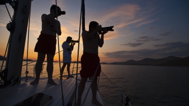 Vacante sailing